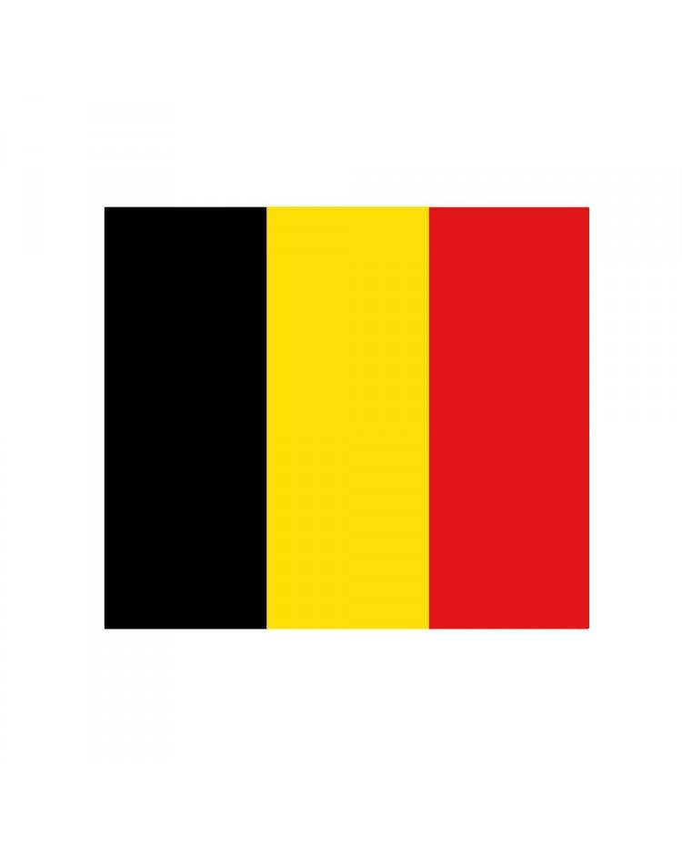 Pavillon Belgique 20 x 30 cm