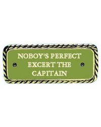 Plaque bronze Nobody's perfect