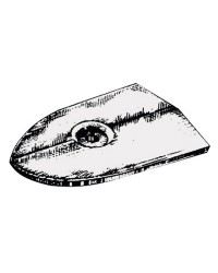 Anode plaque Yamaha/Mariner 6C/6D/8C
