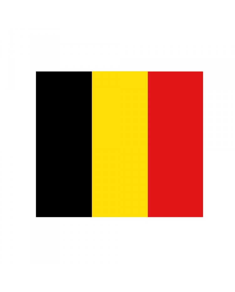 Pavillon Belgique 30 x 45 cm