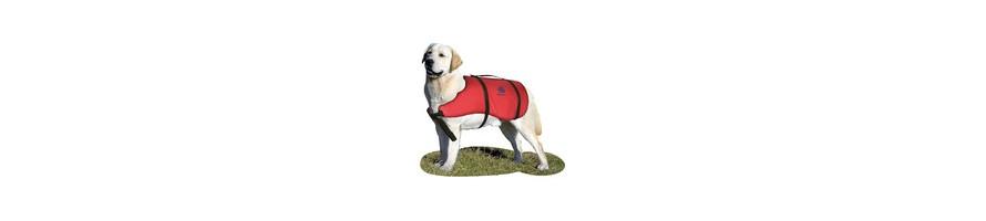 Gilet dorsal pour chien